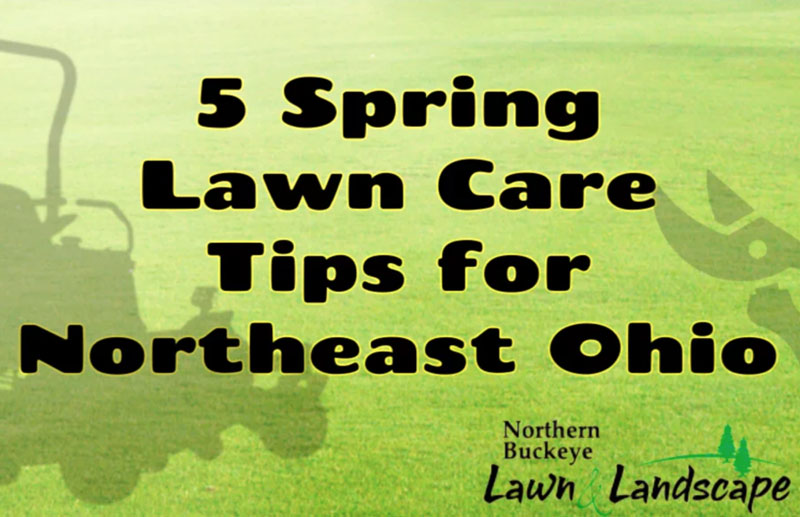 5 Spring Lawn Care Tips for Northeast Ohio