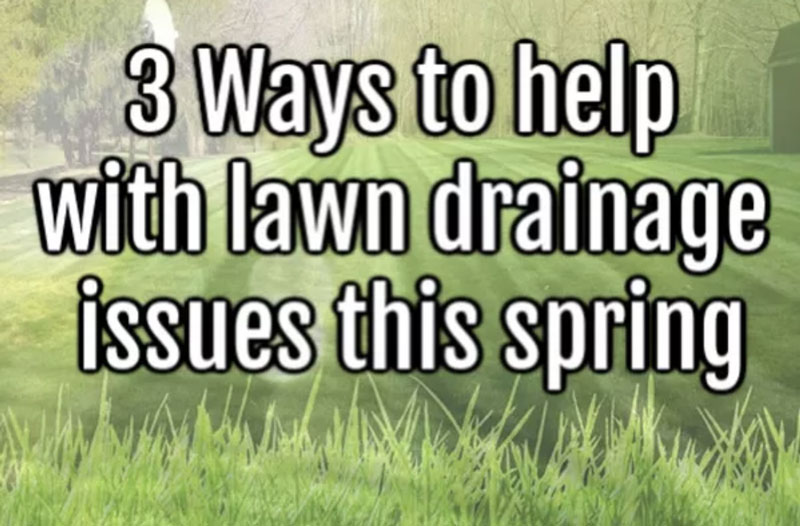 3 ways to help with lawn drainage issues this spring!